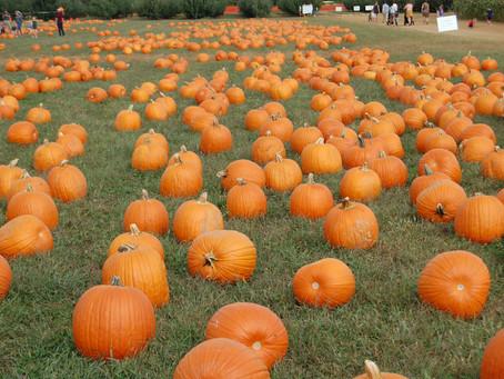 Halloween is Thursday October 31, 2019