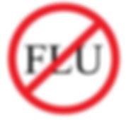 flu 1.jpg