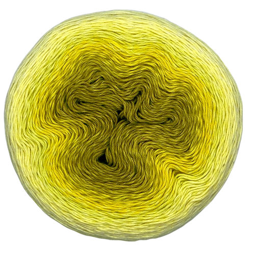 Whirl - Daffodil Dolally