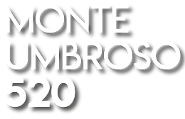 logos-proyecto-520.png