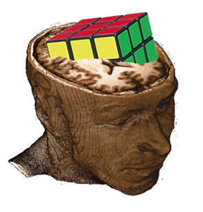 head_edited.png