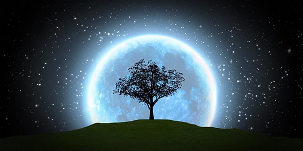 Full Moon Hike, Meditation & Sound Healing