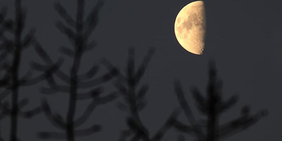 Half Moon Guided Meditation & Sound Healing