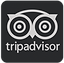 leave-review-trip-advisor-cafe-kombucha.