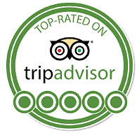 trip+advisor+no+background.png