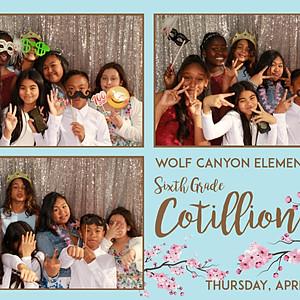 Wolf Canyon Elementary Cotillion