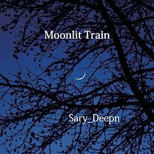 Moonlit Train 2.jpg