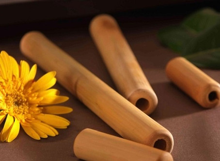 Bambuterapia, conheça os efeitos na sua Saúde
