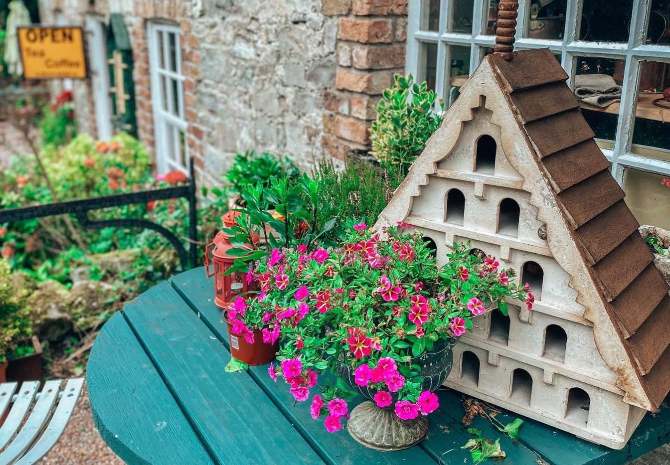 BIRD HOUSE.jpg