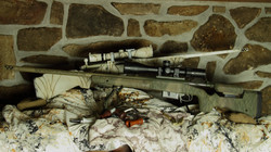 NHB ReddNobb custom rifles