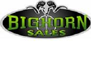 bighorn.jpg
