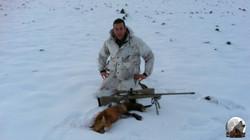 1er renard de Mic,  Mic's first fox