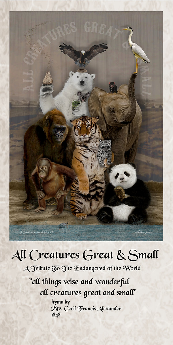 ALL CREATURES GREAT & SMALL   STORY.jpg