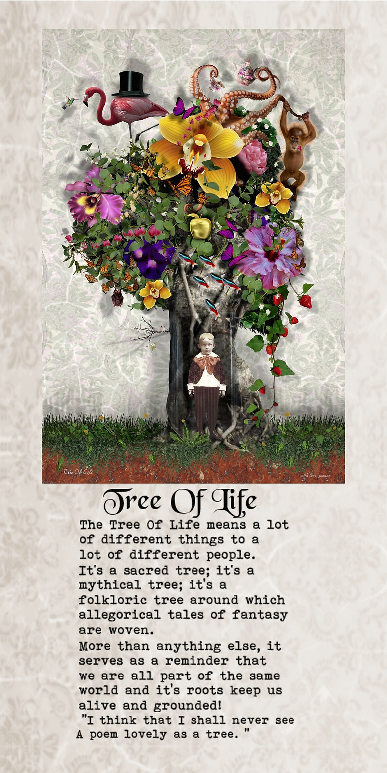 tree of life web pagfe.jpg