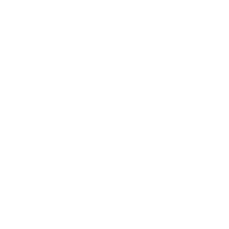 Octagon.png