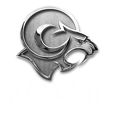 Ramcat_BrushedChrome_WhiteText.png