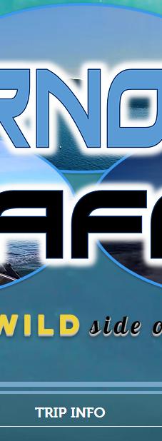 Stornoway Seafari - Website / Logo