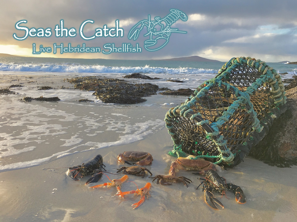 Seas the Catch - Isle of Harris