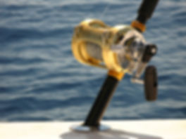 deep-sea-fishing-1323571_1920.jpg