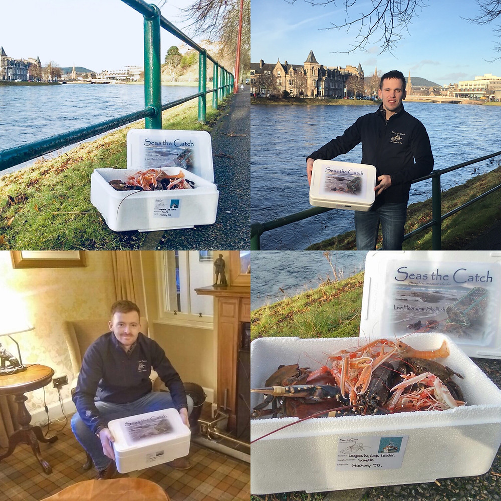 Seas the Catch sample boxes ready to be delivered by Stewart and Neil.