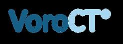 VoroCT-TM-01 (1).png