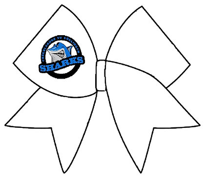 Logo Anhänger Medisize