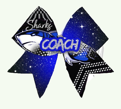 Coaches Bow