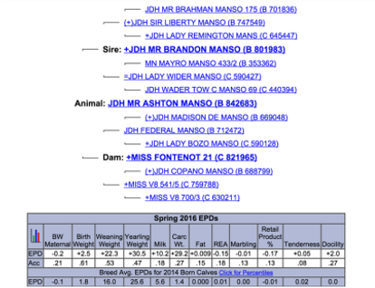 ahston manso paper.png