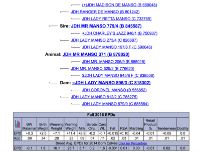 mr manso paper.png