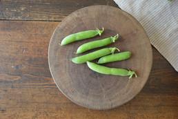 Masseria Faraone | harvesting from our Green Peas (mini) Crop