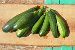 Masseria Faraone | Fresh Vegetables from our Garden