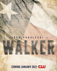 Walker-movie-poster_LandrumArts.jpeg