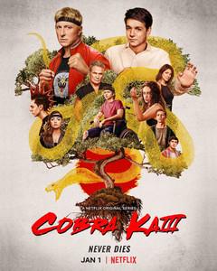Cobra-Kai-S3-movie-poster_LandrumArts.jp