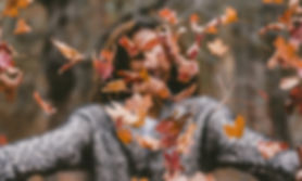 fall leaves and person.jpg