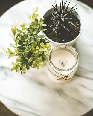 ハウス植物とキャンドル