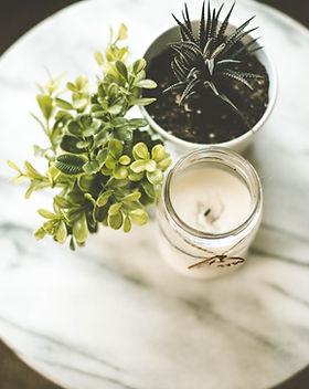 Plantas da casa e vela