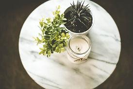 Hus Växter och Stearinljus