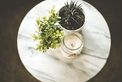 Piante domestiche e candela