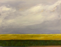 Canola Fields, Manitoba Cloudy Morning