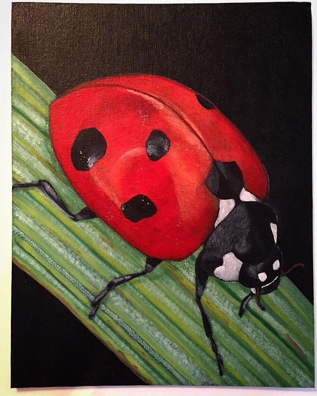 #ladybug #painting #art #acrylicpaint