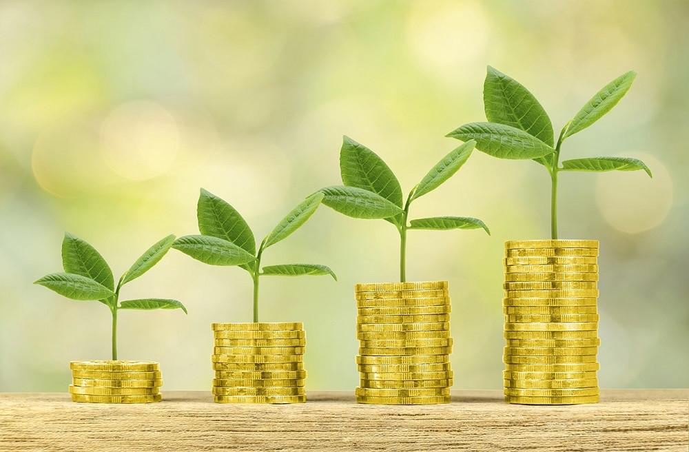 Sustentabilidade como vantagem competitiva: árvores crescendo em cima de pilhas cada vez maiores de moedas