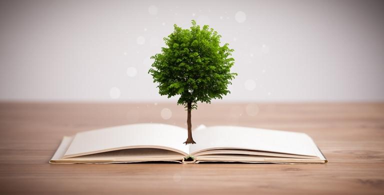 Leis ambientais brasileiras para empresas - árvore saindo de livro