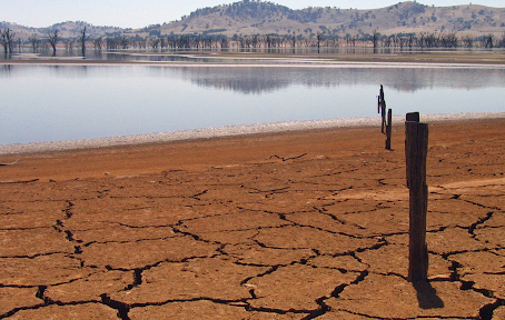 O Brasil está secando. Como você pode proteger seu negócio desse risco hídrico?