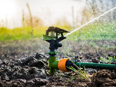 Poço artesiano para irrigação: tudo que você precisa saber