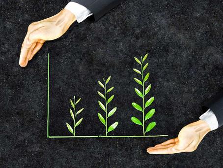Guia de investimento em ESG: o que você precisa saber