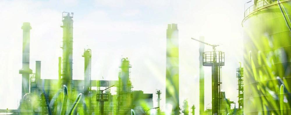 Saiba como aplicar sustentabilidade ambiental na sua empresa