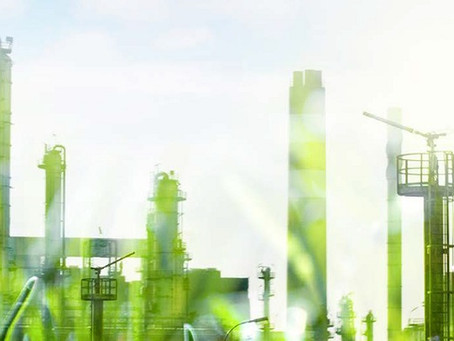 7 ideias para se tornar uma empresa ambientalmente sustentável