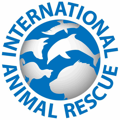 International Animal Rescue.jpg