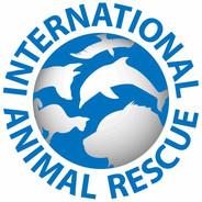 International Animal Rescue.jpg