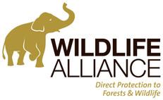 Wildlife Alliance.jpg